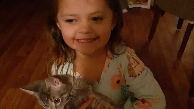 Menina morre de Covid. Foi infectada pela mãe que era anti-vacinas