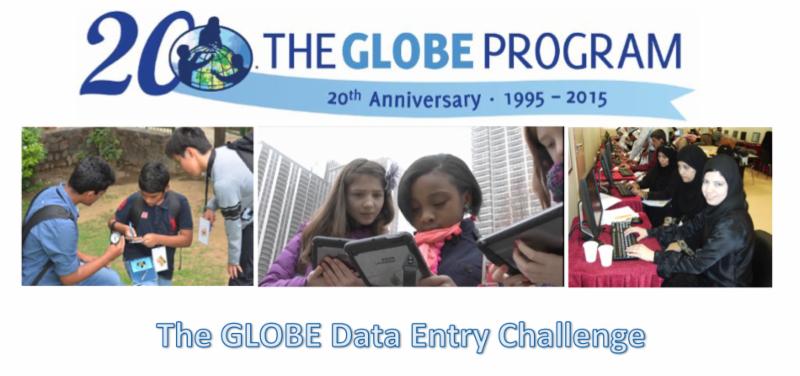 data entry challenge