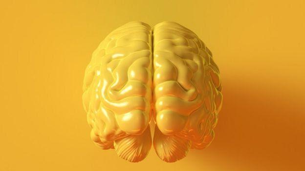 Modelo de cérebro na cor amarela