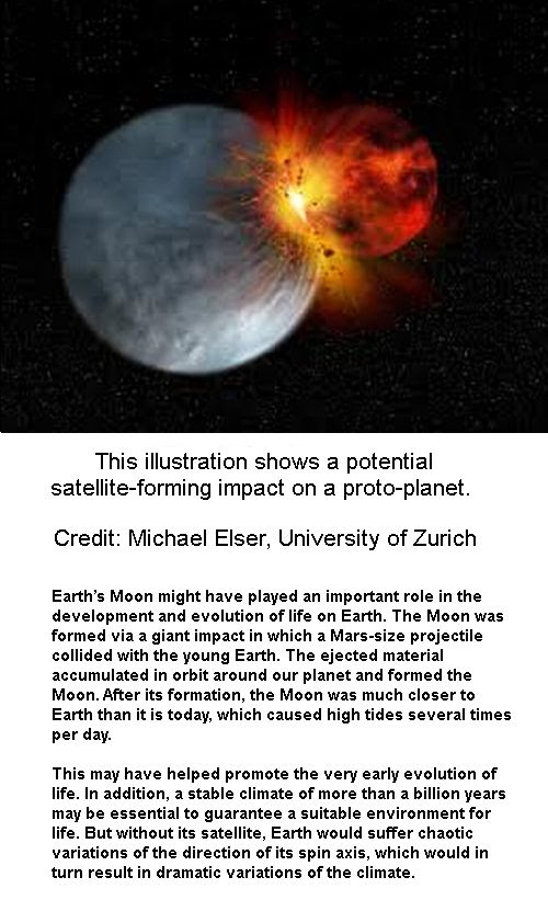 Protoplanet Impact