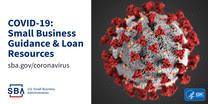 Coronavirus (COVID-19): Small Business Guidance & Loan Resources