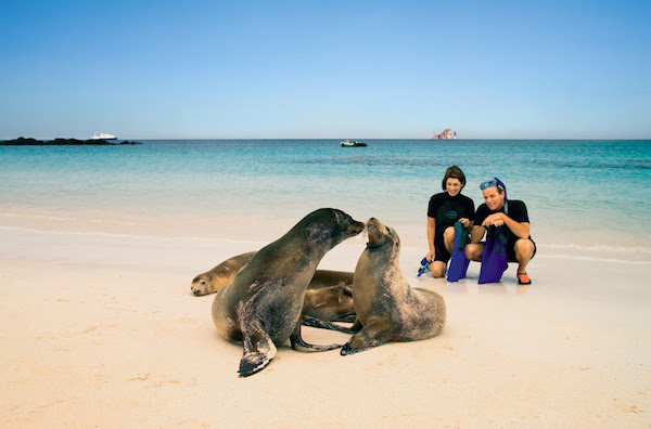 seal watching by guests of the Celebrity Galapagos cruise ship