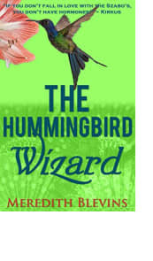 The Hummingbird Wizard by Meredith Blevins