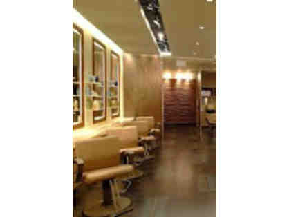 Scott J Aveda UES - Single Process and Haircut Service