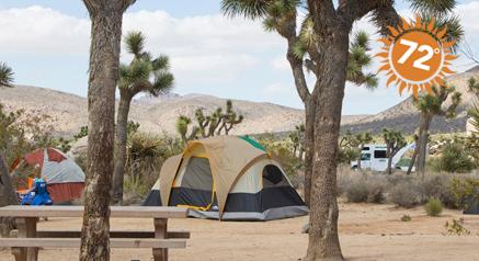 Image of Joshua Tree National Park, CA