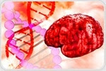 UVA research shows true nature of immune cells blamed in Alzheimer's