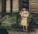 RER ZNR2