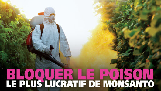 Interdiction du poison le plus rentable de Monsanto
