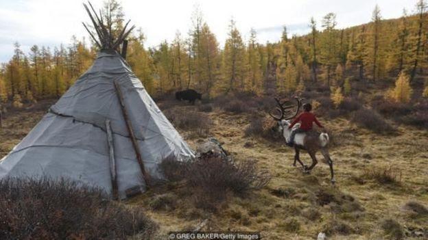 Người Tsaatan là một dân tộc thiểu số chăn dắt tuần lộc dọc theo biên giới phía bắc Mông Cổ