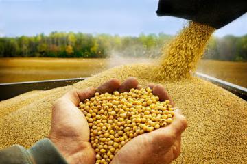 Brasil elevará en 27% su producción de granos al 2031