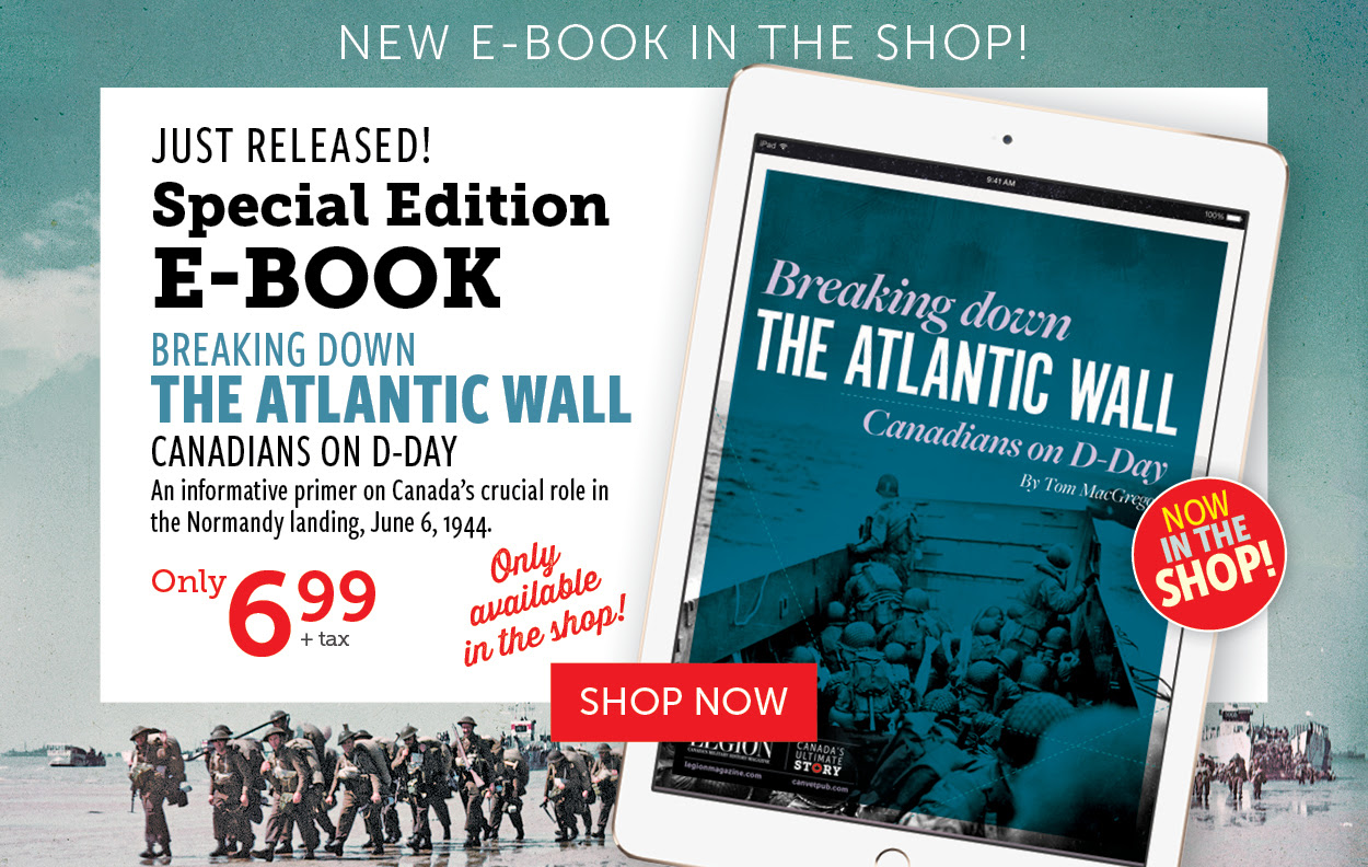 The Atlantic Wall e-book