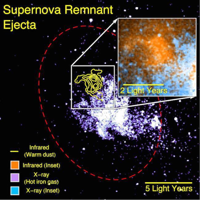 Supernova remant. Image Credit: NASA/CXO/Herschel/VLA/Lau et al