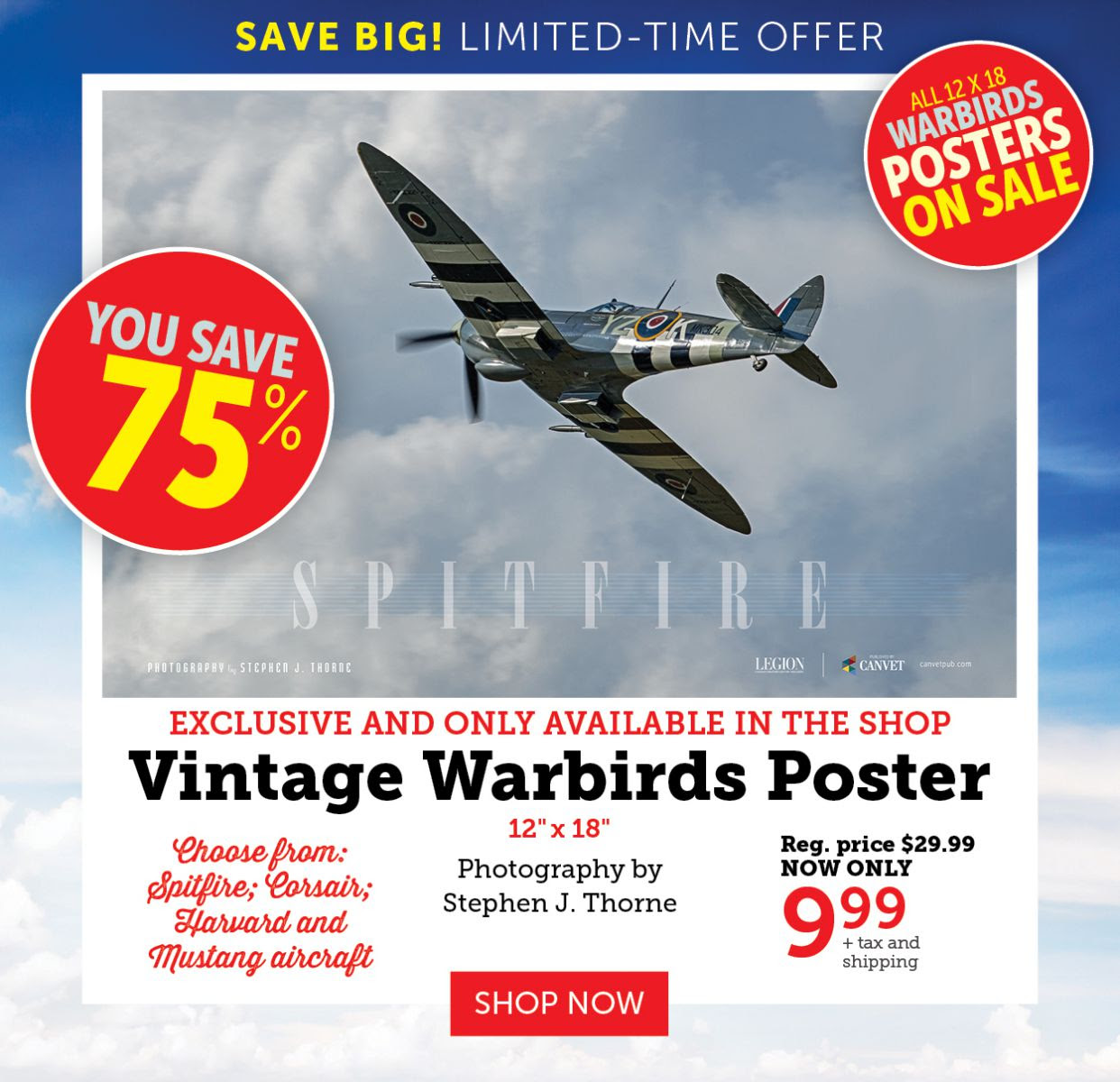 Vintage Warbirds Posters - 75% OFF!