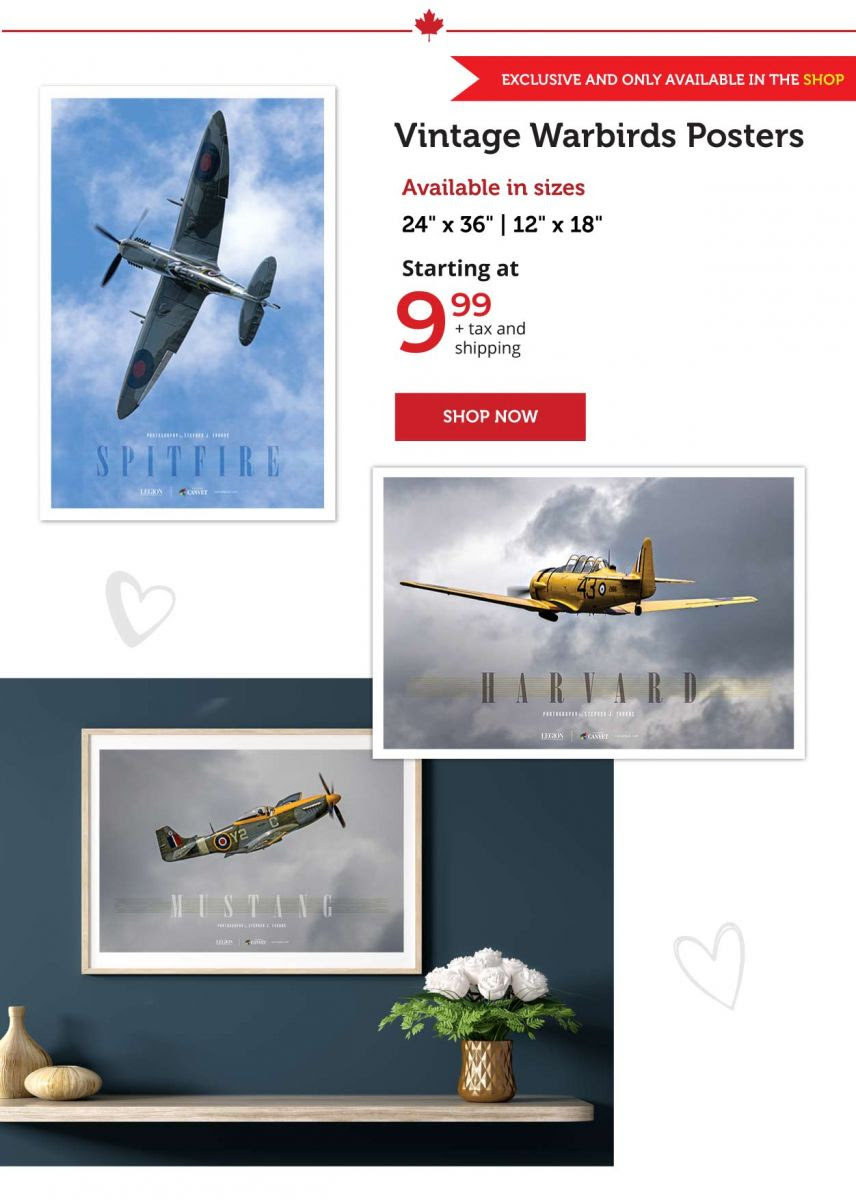 Warbirds Posters