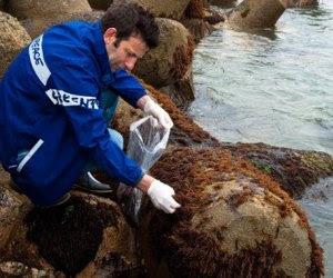 Fukushima-causo-el-mayor-desastre-de-contaminacion-radiactiva-marina-de-la-historia