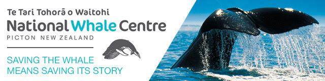Whale Centre
