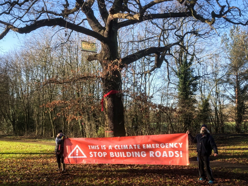 """Veteran Oak Tree with banner """"This is a Climate Emergency - Stop Building Roads"""""""