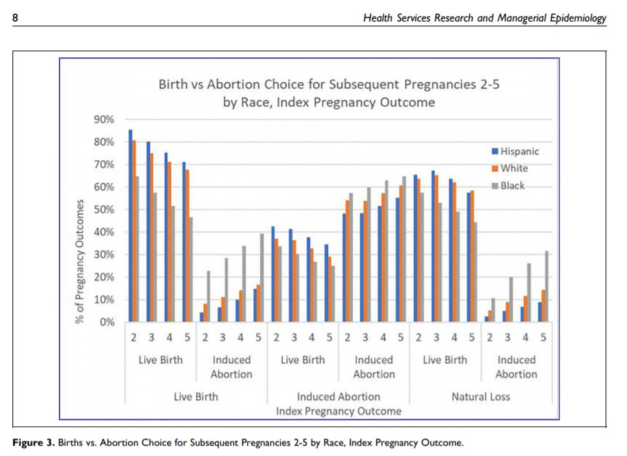 Image: Birth v Abortion and subsequent pregnancies by race