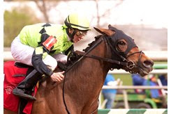 Goodonehoney wins the Weber City Miss Stakes at Laurel Park