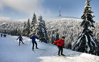 Winter: Great downhill runs, fun snow parks, cross-country trails or sledging runs? Winter in the Czech Republic will not allow you to sit idle!