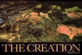 Image result for the creation ? photo