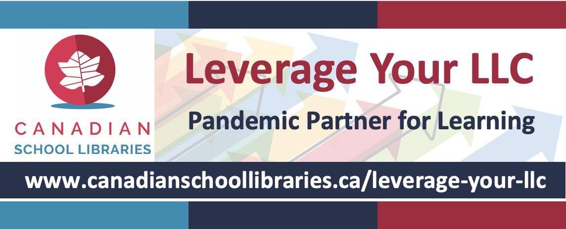 Leverage Your LLC