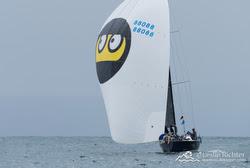 J/88 sailing Newport Ensenada Race