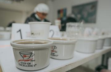 Cusco organiza feria de cafés especiales donde se lucirán las mejores variedades de Perú