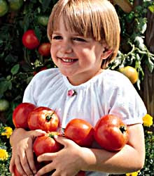 tomatoes and child