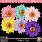 Daisies Clipart - CU