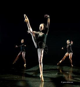 Terra Firma Dance Theater