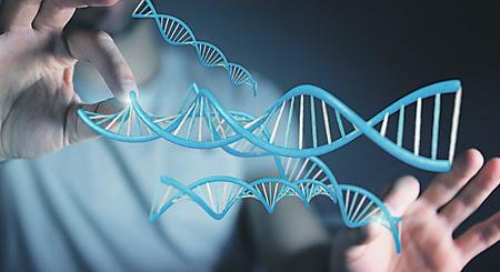 Общая длина молекул ДНК в теле человека превышает расстояние от Земли до Солнца.Иллюстрация Depositphotos/PhotoXPress.ru