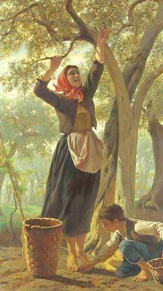 la-raccolta-delle-olive (335x599, 127Kb)