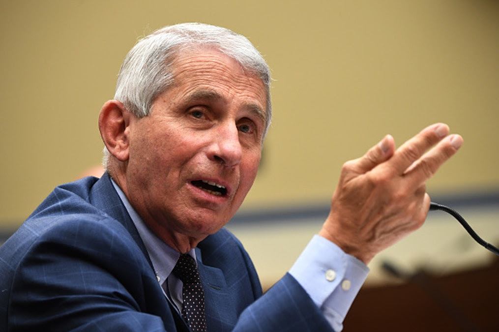 Fauci Approves In-Person Voting: 'There's No Reason' Why We Shouldn't Be Allowed