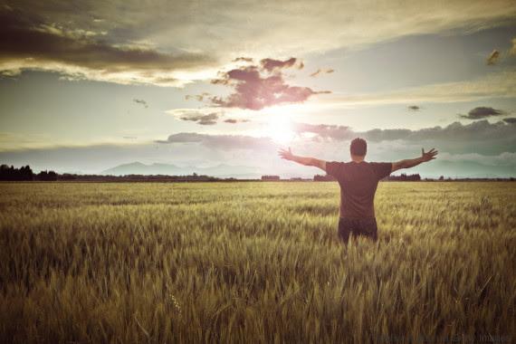 showring gratitude