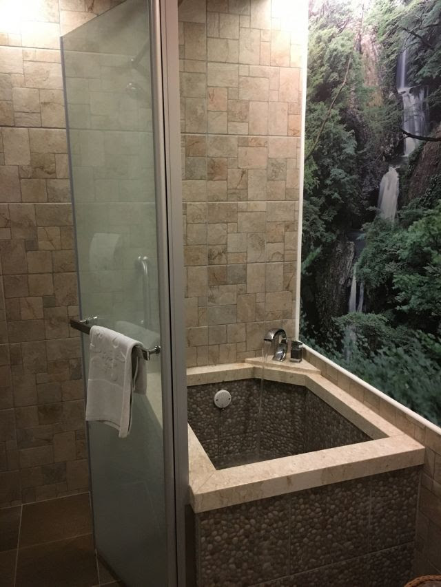 A bathroom with shower and small, deep square tub, with a photo of waterfalls on the wall.