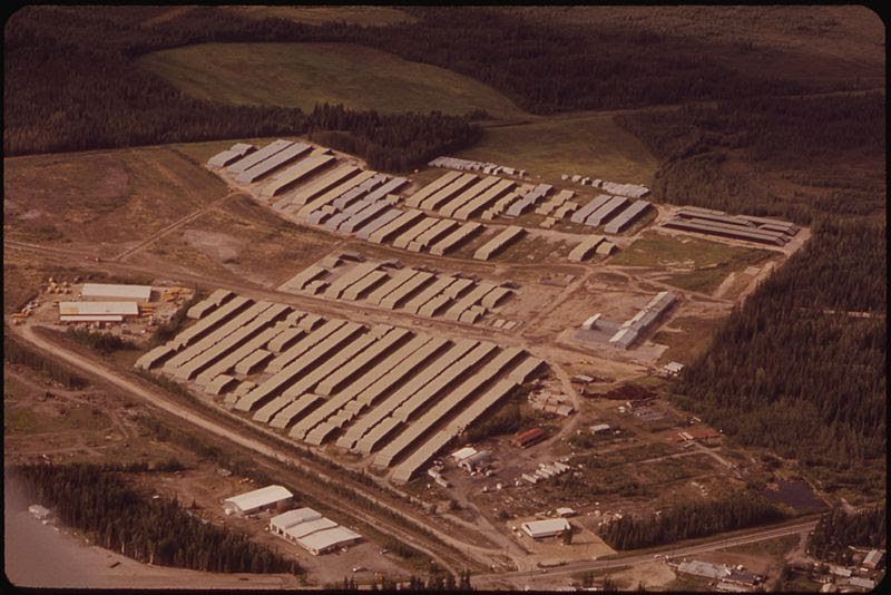 File:ALYESKA PIPELINE SERVICE COMPANY'S FAIRBANKS PIPEYARD, WITH MORE THAN 200 MILES OF 48-INCH PIPE. MOST LENGTHS ARE... - NARA - 550552.jpg