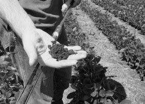 soil health USDA NRCS SD
