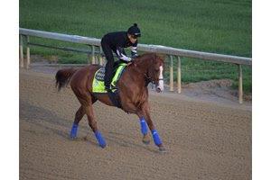 Justify gallops at Churchill Downs May 10