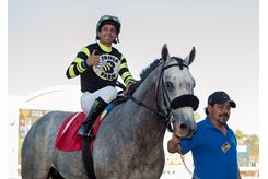 Greyvitos' connections hope he could return to the races by mid-April, in time to possibly squeeze in a Kentucky Derby prep race