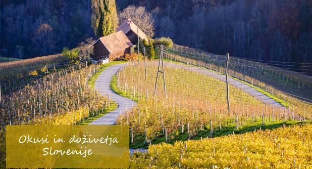 http://www.mholidays.si/pocitnice/slovenija/okusi_dozivetja