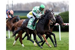 North Dakota wins the Red Smith Stakes at Aqueduct Racetrack