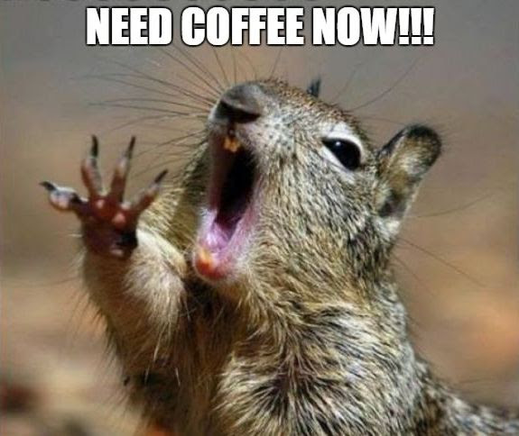 Coffee_Squirrel