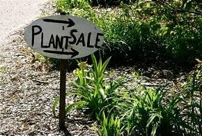Annual-plant-sale2.jpg