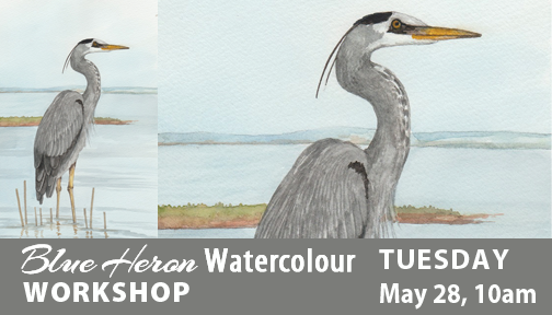 Blue Heron Watercolour Workshop with Twila Robar-DeCoste May 28, 2019