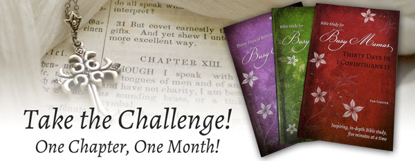 Take The Challenge: Bible Study for Busy Mamas