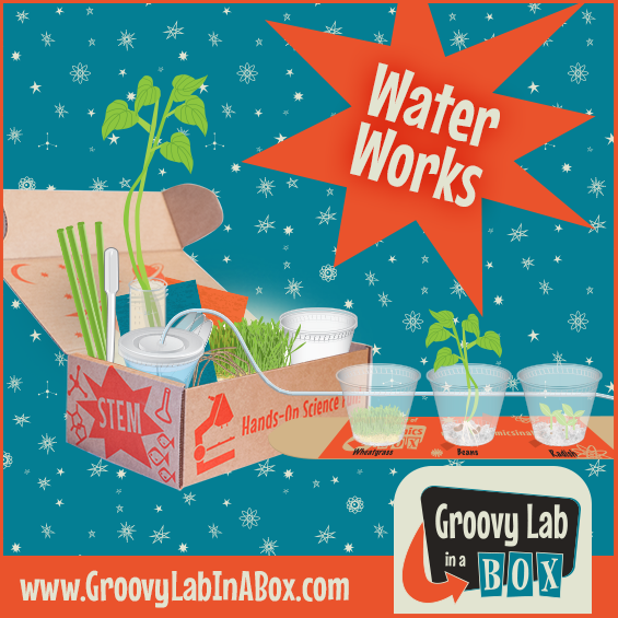 Groovy Lab in a Box - Water Works