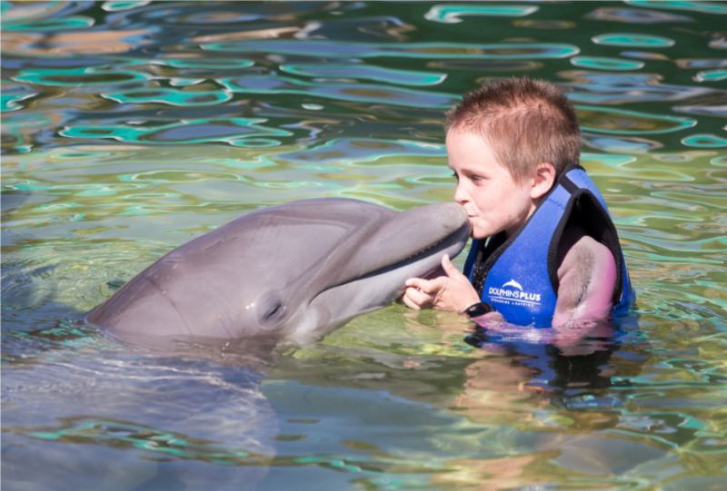 Make A Wish Cooper with Dolphin