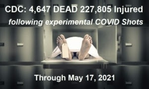 CDC Stats through May 17th, 2021 CDC-Deaths-Injuries-5.17.21-768x460-1-300x180
