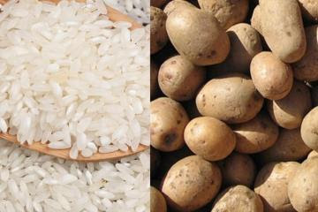 ComexPerú: Protecciones arancelarias perjudican al consumidor